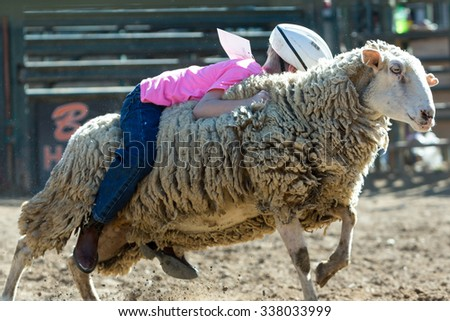 Some Mutton Busting at the Rodeo - stock photo