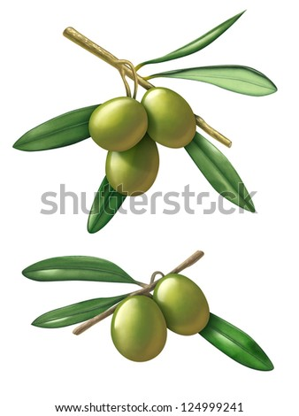 Some olive branches. Digital illustration with clipping path included. - stock photo