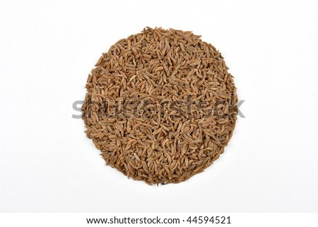 some organic caraway seed and a bright background