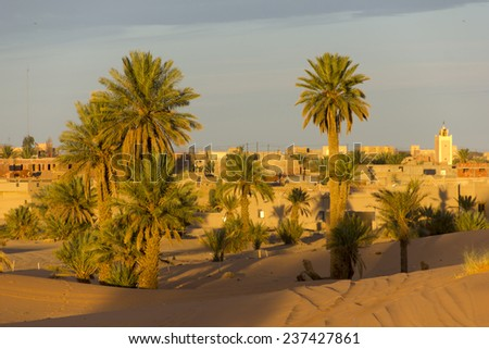 Some palms on the edge of the village of Merzouga in Morocco - stock photo