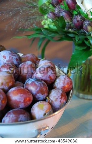 Some plums on a blue tablecloth. - stock photo