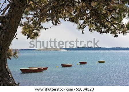 Some red rowboats for rent in sea with pine tree in croatia - stock photo