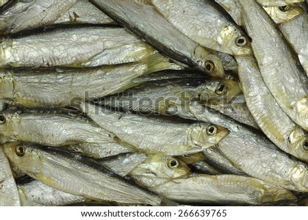 some salty sprats abstract background - stock photo