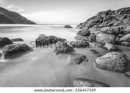 some scenic view of the beach in Heceta Head Lighthouse State Scenic Area,Oregon,USA. - stock photo