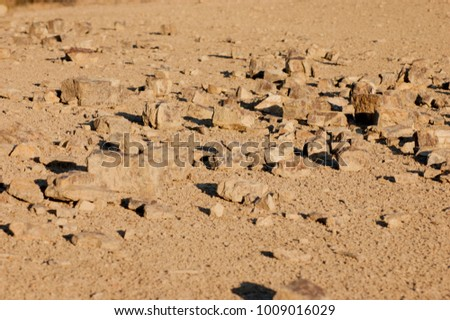 Some stones scattered on the dry ground soil