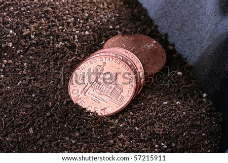 Some the American cents on a ground before a shovel.