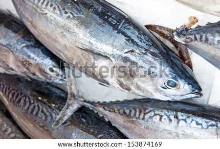 Some tuna fishes exposed at the market