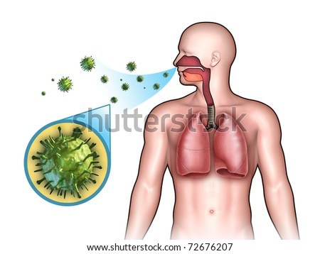 Some virus entering the respiratory system through the nose. Digital illustration. - stock photo