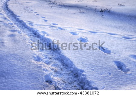 Somebody have his own way. Path and steps on the snow. HDRI image. - stock photo