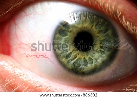 Someone is giving you the evil eye! (Extreme macro of a wide open eye) - stock photo
