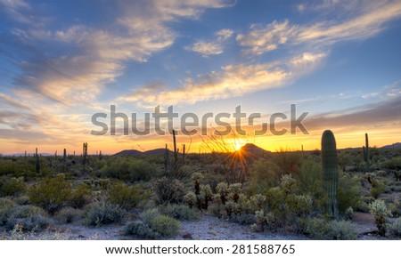 Sonoran Desert catching day's last rays, under beautifull sky. - stock photo
