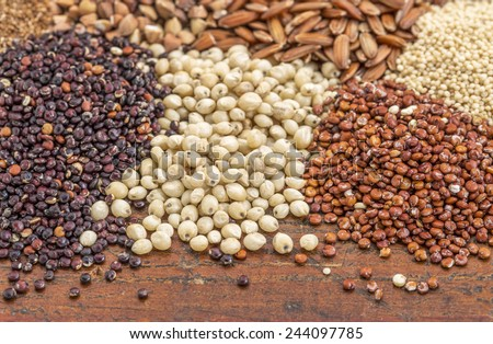 sorghum, red and black quinoa, and other glyuten free grains (millet, brown rice, buckwheat, teff) - stock photo
