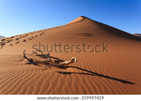 Sossusvlei dune, Namibia - stock photo