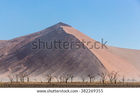 Sossusvlei Dunes landsape with dead trees in Namibia - stock photo