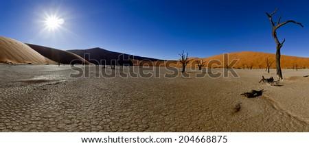 sossusvlei panorama - stock photo