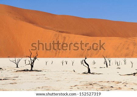 Sossusvlei (sometimes written Sossus Vlei) is a salt and clay pan surrounded by high red dunes, located in the southern part of the Namib Desert, in the Namib-Naukluft National Park of Namibia - stock photo