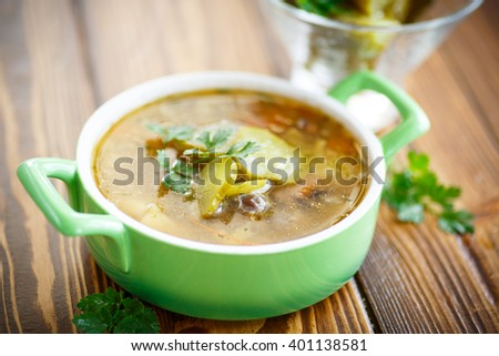 soup with pickled cucumbers on the plate - stock photo