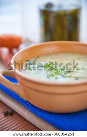 Sour and tasty cucumber soup - stock photo