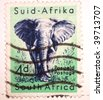 SOUTH AFRICA - CIRCA 1949: A stamp printed in South Africa shows image of an elephant, series, circa 1949 - stock photo