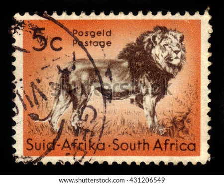 SOUTH AFRICA - CIRCA 1958: A stamp printed in South Africa shows king of beasts, standing lion, circa 1958 - stock photo