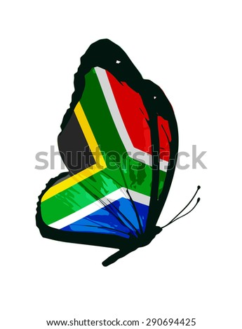 South Africa flag butterfly - stock photo