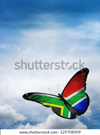 South Africa flag butterfly flying on sky background - stock photo