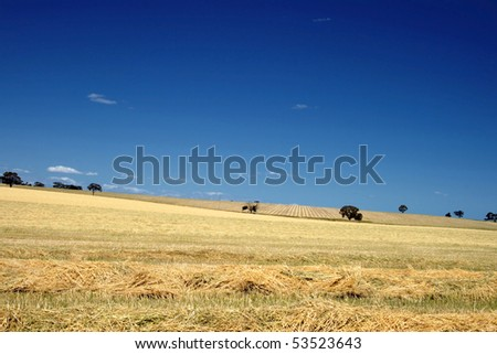 South Australia Country Side