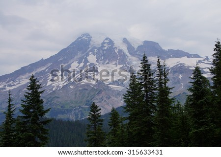 South face and glaciers of Mt. Rainier, with conifer forest,Mount Rainier National Park