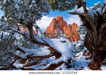 South Gateway Rock formation framed by Juniper Trees at the Garden of the Gods Park in Colorado Springs, Colorado with fresh fallen snow in early morning - stock photo