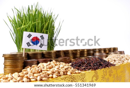 South Korea flag waving with stack of money coins and piles of wheat and rice seeds