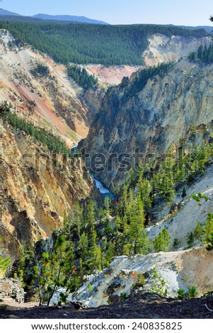 south rim of the canyon of the yellowstone in wyoming during summer