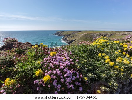 South west coast path near Bedruthan Steps Cornwall Uk - stock photo