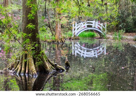 Southern swamp with arched white bridge reflecting in the water near Charleston, South Carolina. - stock photo