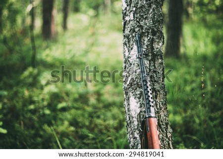 Soviet rifle of World War II leaning against trunk of birch. - stock photo