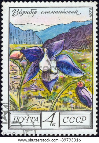 SOVIET UNION - CIRCA 1976: A stamp printed by the Soviet Union Post shows Catchment Olympic (Aquilegia Olympica), circa 1976