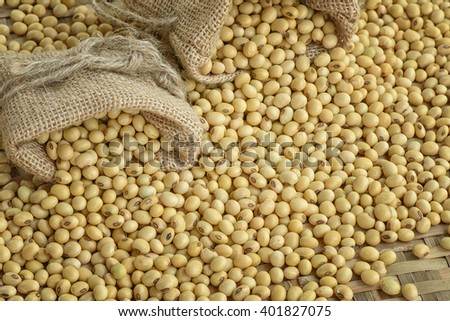 Soy bean - stock photo