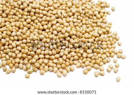 soy bean as a background
