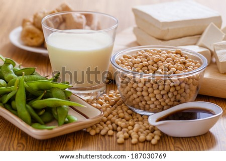 Soy bean, tofu and other soy products - stock photo