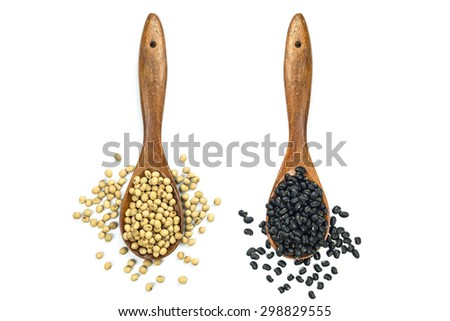 Soy beans and black beans in wooden spoon isolated on white background - stock photo