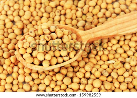 Soy beans close-up