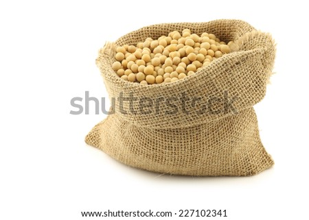soy beans in a burlap bag on a white background - stock photo