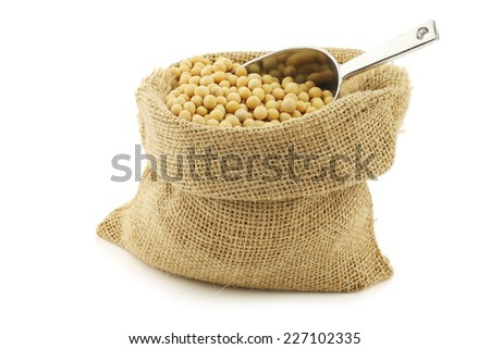 soy beans in a burlap bag with an aluminum scoop on a white background - stock photo