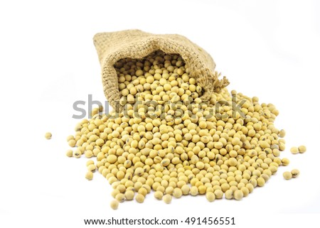 soy beans in sack on white background