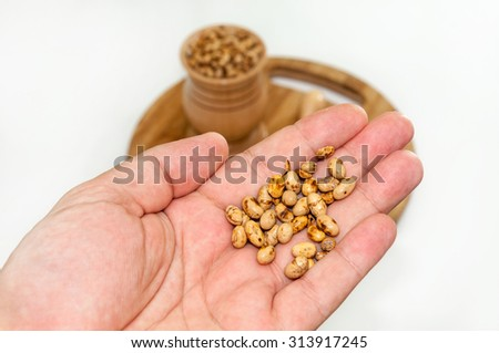 Soy beans in the hand over white.