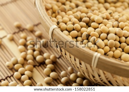 Soy beans shooting in studio - stock photo
