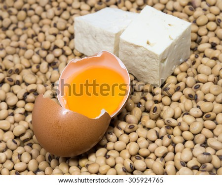 Soy tofu and egg on soybeans background - stock photo