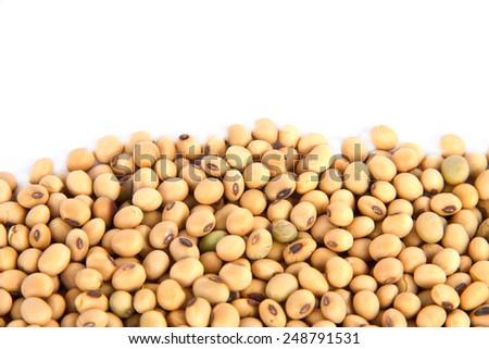 soya beans - stock photo