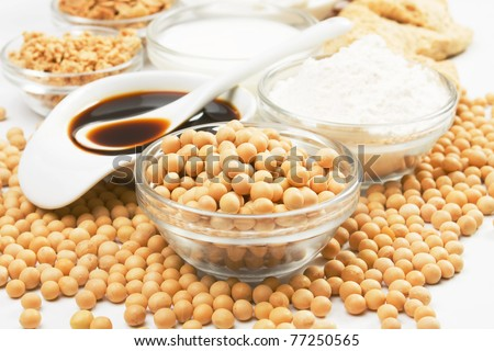 Soybean and soy products used in asian an vegetarian cuisine - stock photo