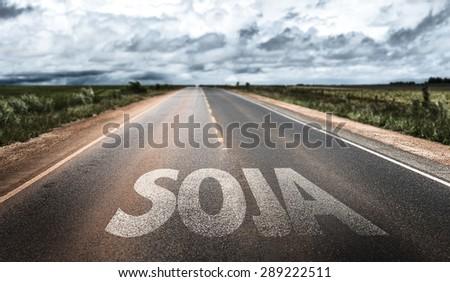 Soybean (in Portuguese) written on rural road - stock photo
