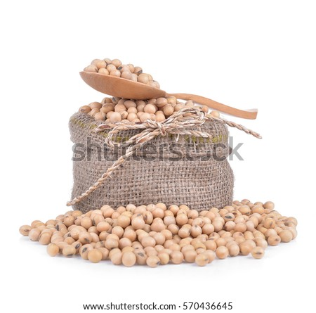 Soybean isolated on white